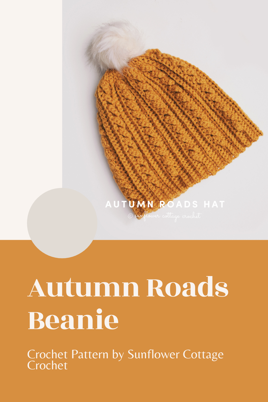 autumn roads beanie